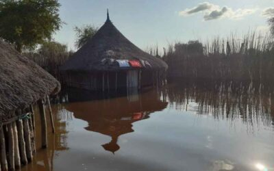 Pandemic, famine, flooding. South Sudan, an alarming situation
